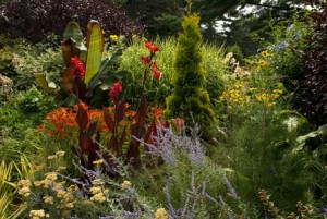from-The-Jane-Watson-Irwin-Perennial-Garden